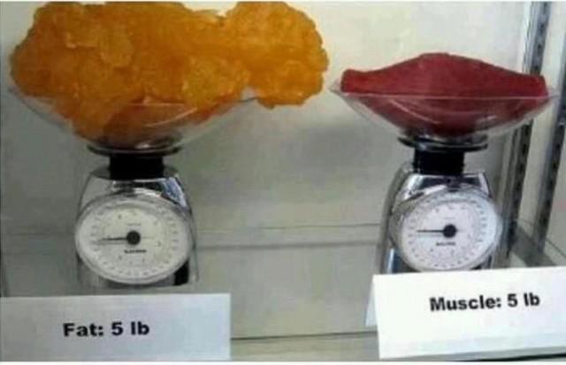 Losing Weight vs. Gaining Muscle | Pancakes & Push-Ups