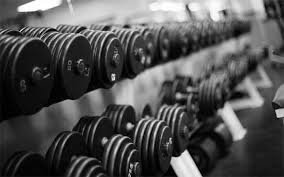 Dumbbells on a Rack in a Gym   Pancakes & Push-Ups